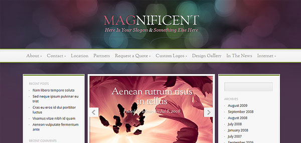 Magnificent WordPress Theme