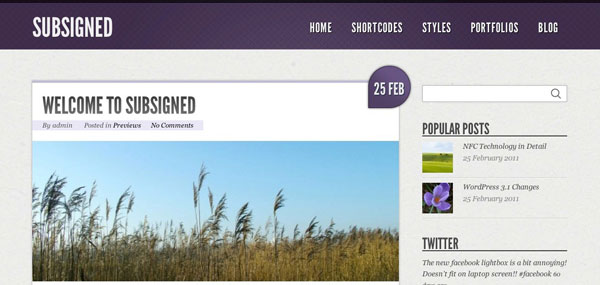 Subsigned WordPress Theme