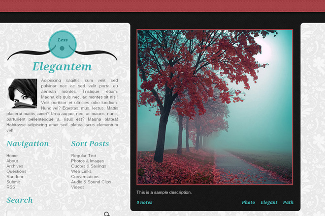 Elegantem Tumblr Theme