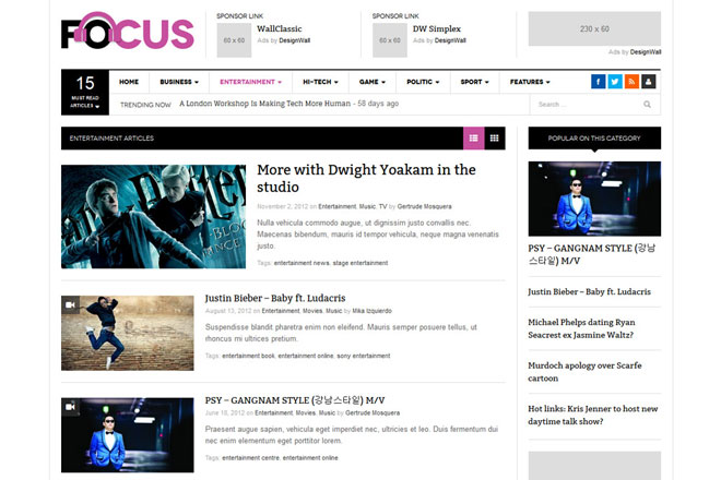 DW Focus Responsive WordPress Theme